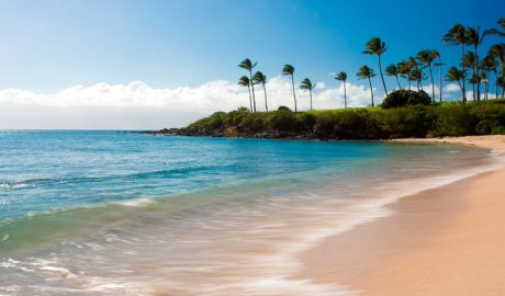 swimmable beaches in Hawaii